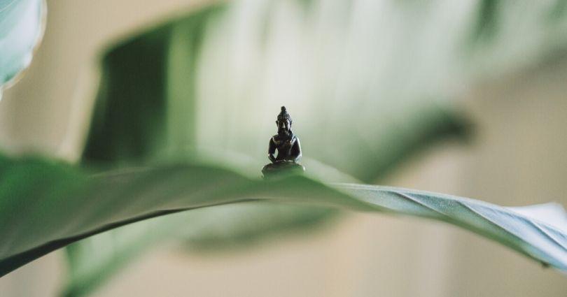 buddha and mindfulness