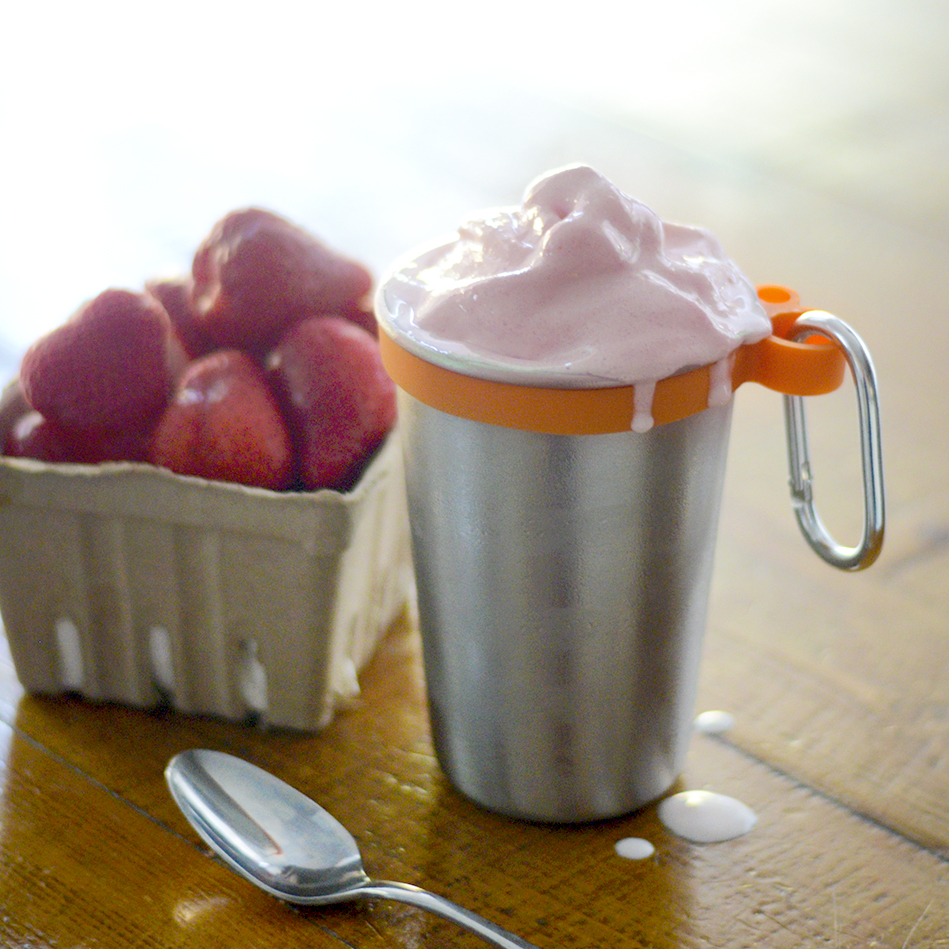 Old Fashioned Strawberry Milkshake Recipe  {with a low carb makeover}