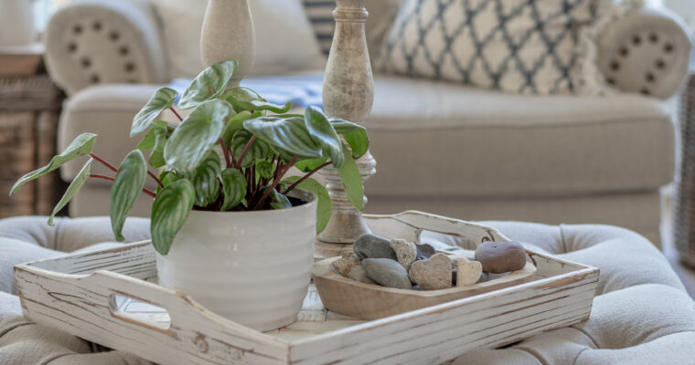 How to Use Trays in Your Decor…and Why You Should