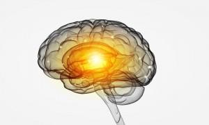Brain Damage Lawsuit Attorneys