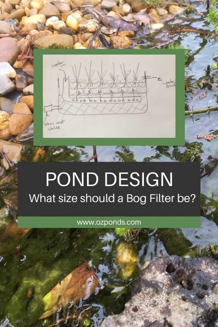 Bog filter design- What size should a bog filter be?