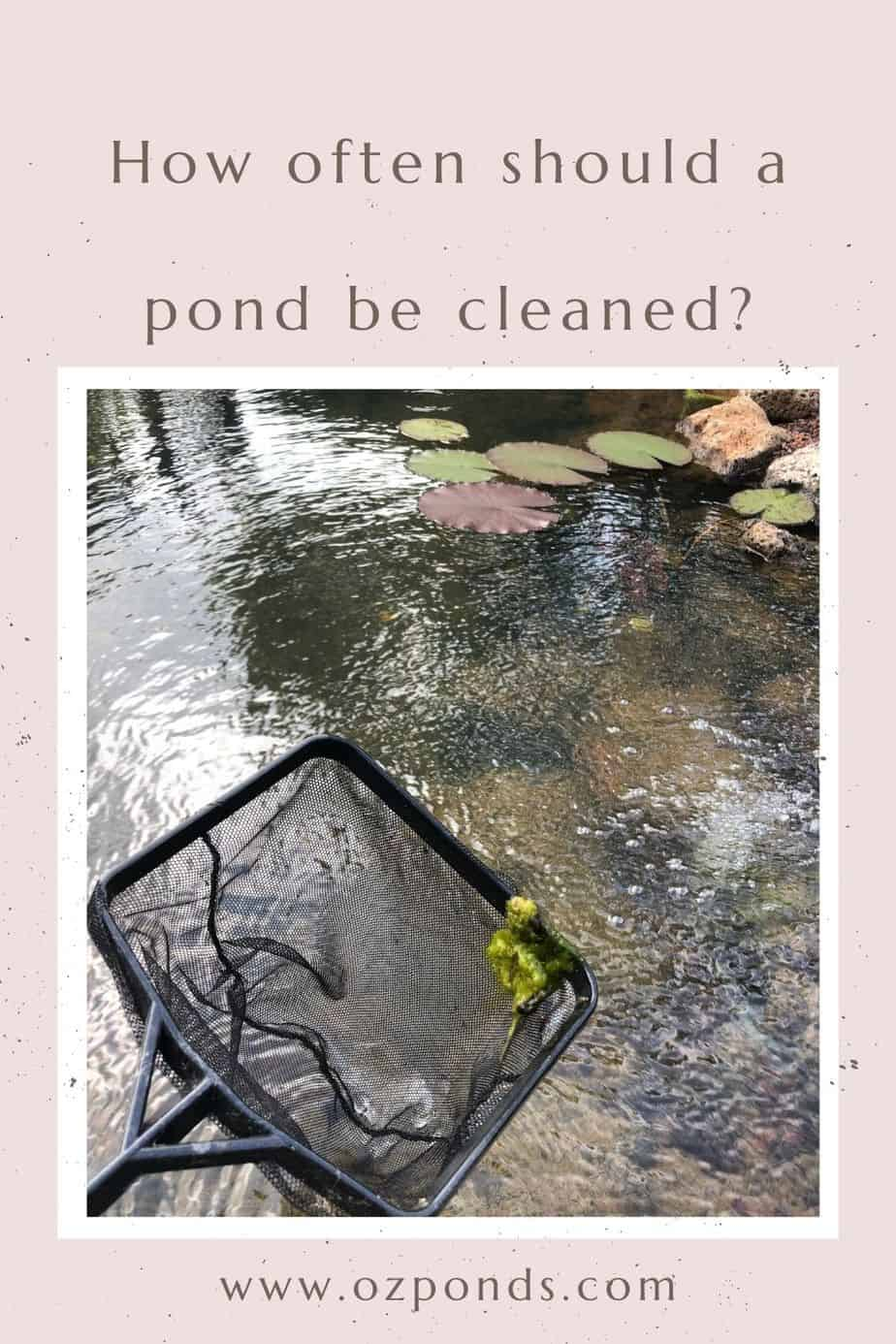 How often should a pond be cleaned?