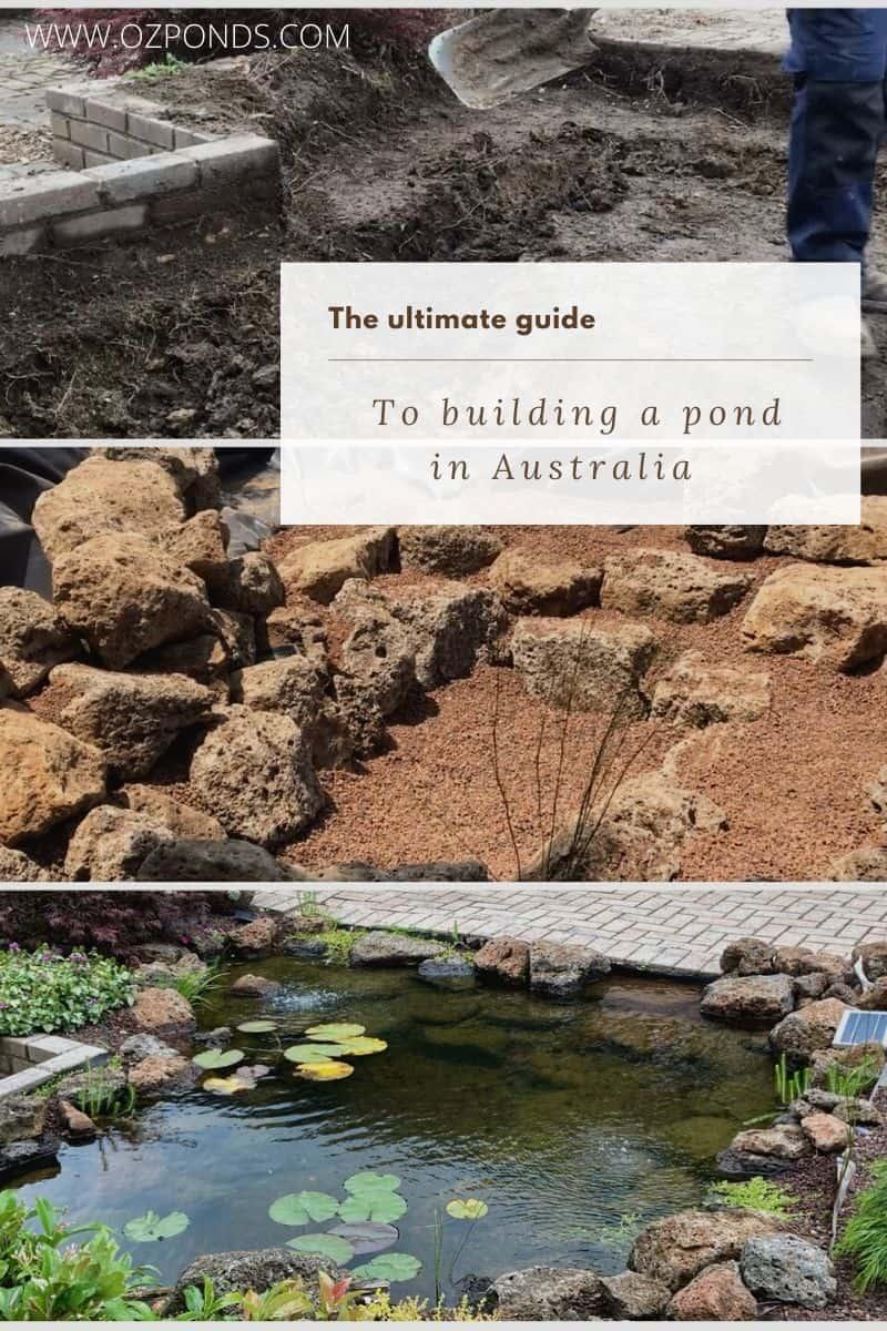 Build-Fish-Pond-Australia-Guide