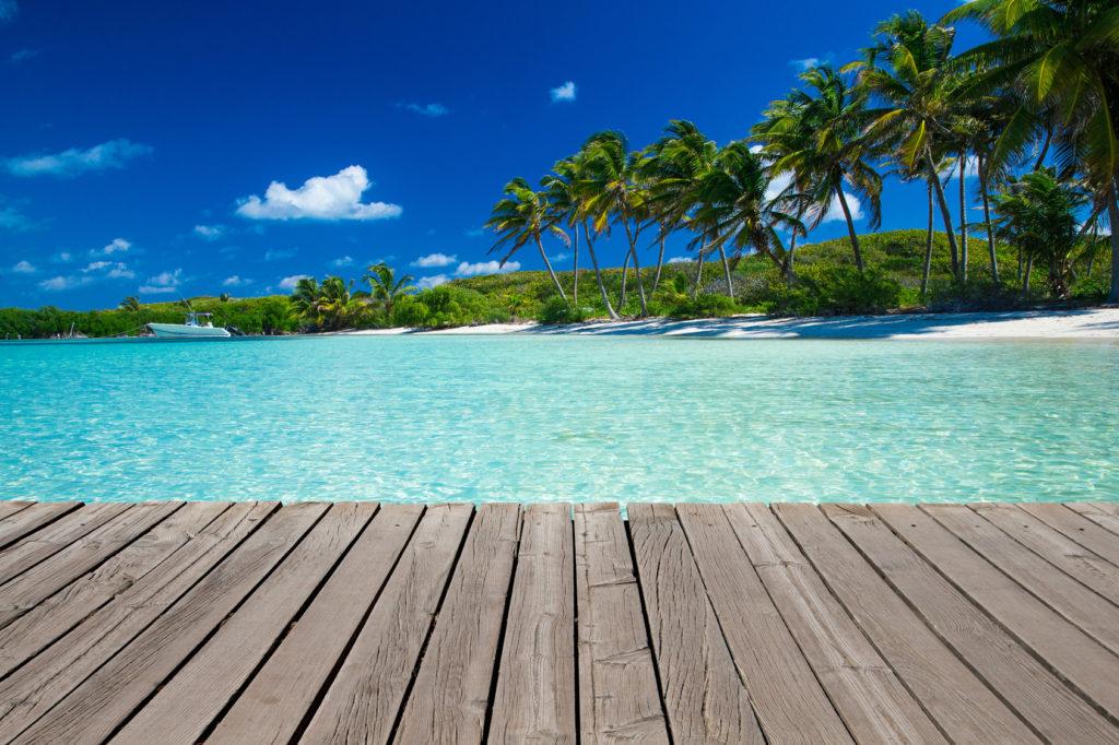 Palms and boardwalk on sunny tropical beach