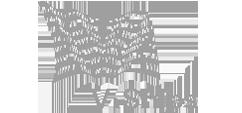 Logo for V. Ships