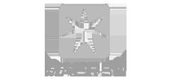 Logo for Maersk