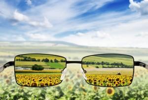 Lens of Gratitude