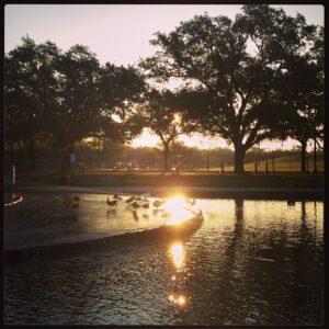 Houston's Herman Park