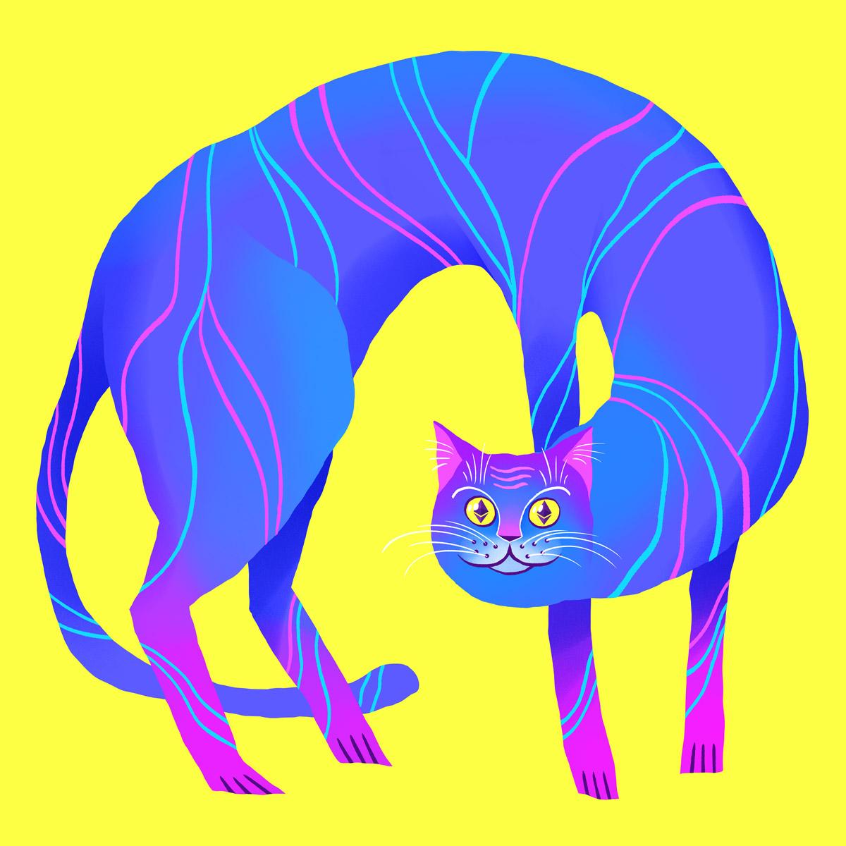 Crypto Cat