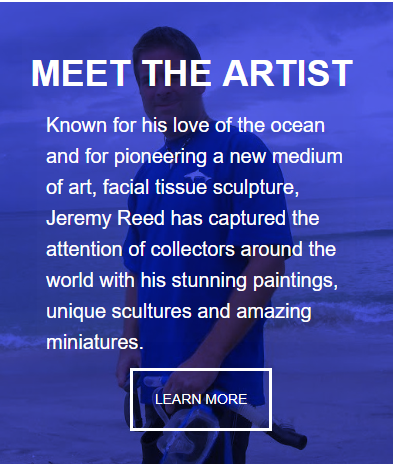 About Sea Life Artist Jeremy Reed