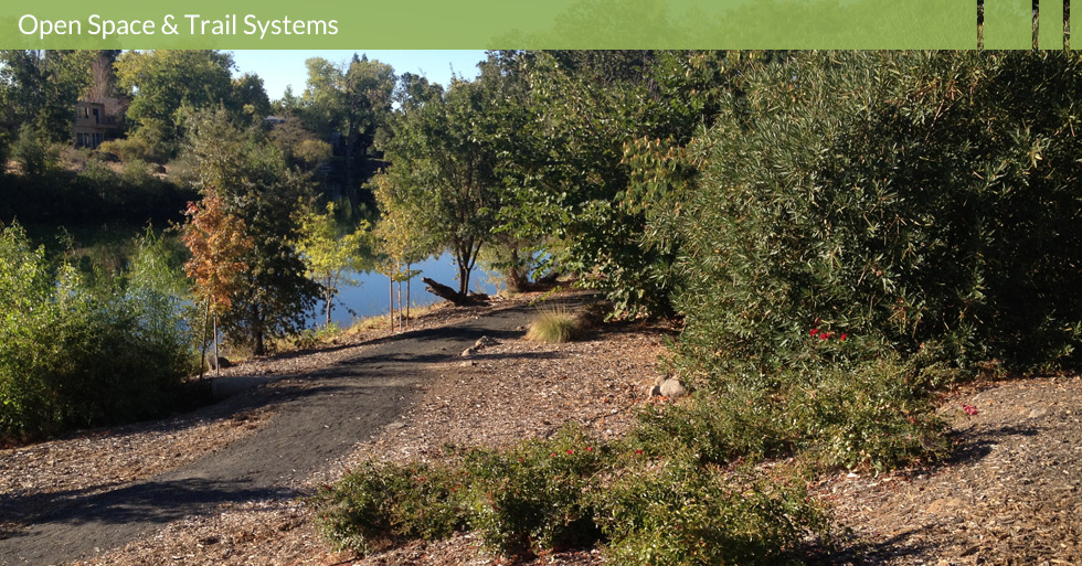 MDG-parks-open-trail-native-oaks-wood-chip-mulch-lower-lake-chico