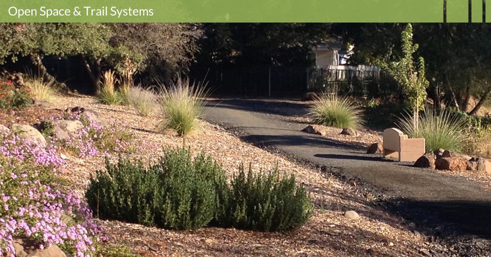 MDG-parks-open-trail-native-ornamental-planting-ca-park-chico