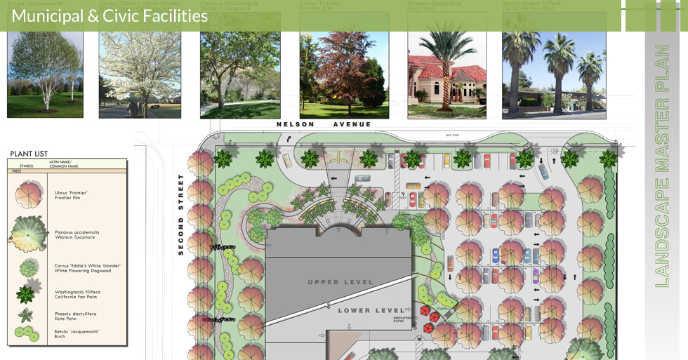 Melton Design Group, a landscape architecture firm, designed the Butte County Hall of Records in Oroville, CA. Designed with many different types of trees – including elm, sycamore, dogwood, California fan palm, birch and more.