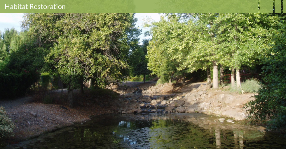 Melton Design Group designed the Chain of Ponds in California Park, Chico, CA. The natural stream running through this housing development was enhanced with a man-made chain of ponds with water falls and natural rocks.