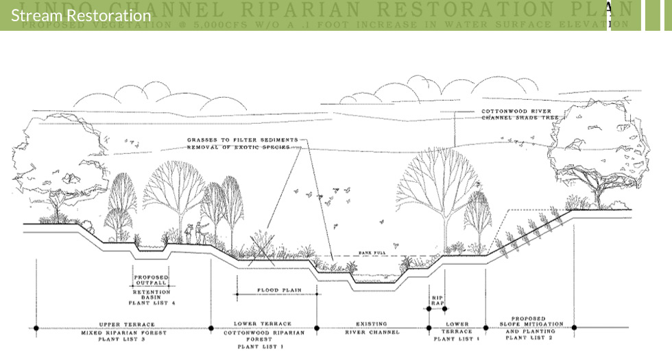 Melton Design Group designed the Lindo Channel Riparian Restoration Plan in Chico, CA.