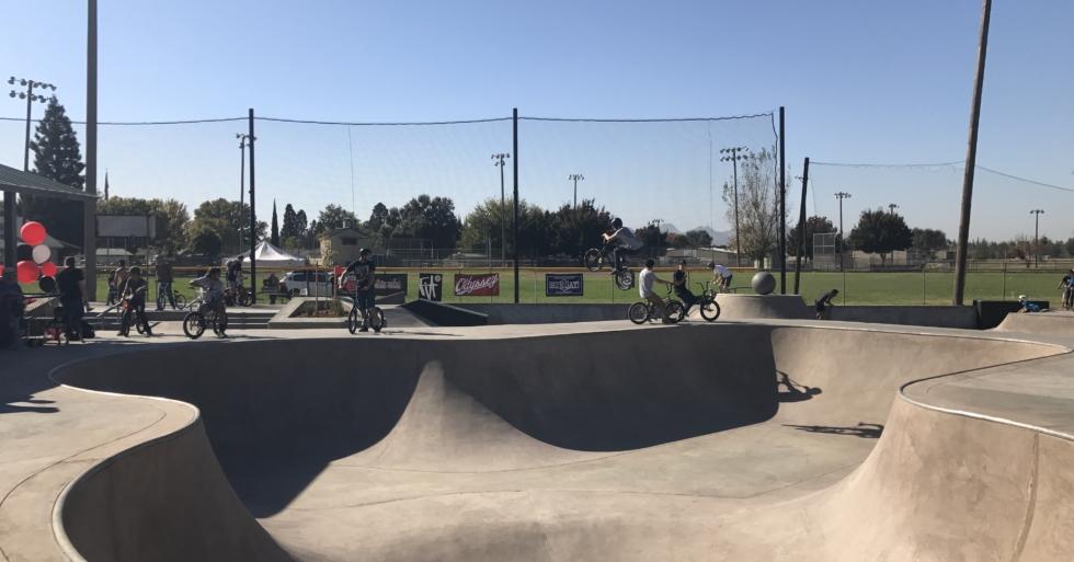 MDG-skate-park-live-oak