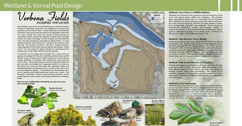 MDG-enviro-wetlands-wetland-protection-verbena-fields-wetland-info