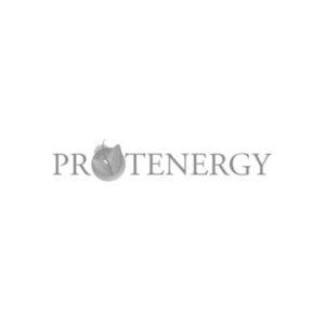 Protenergy Logo