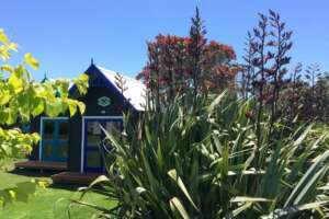 Boatshed Cabin accommodation at Leigh Central