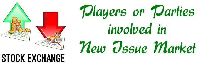 Players or Parties involved in New Issue Market
