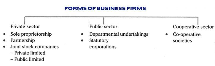 Forms of Business Firms