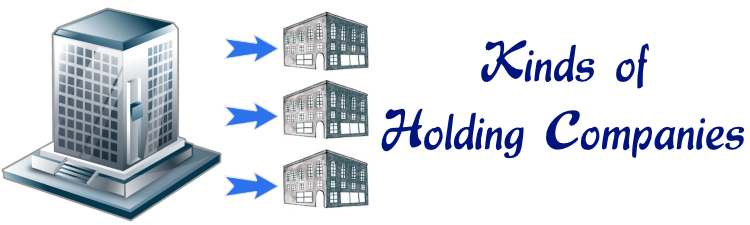 Kinds of Holding Companies