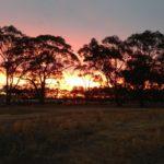 NSW subclass 489 update
