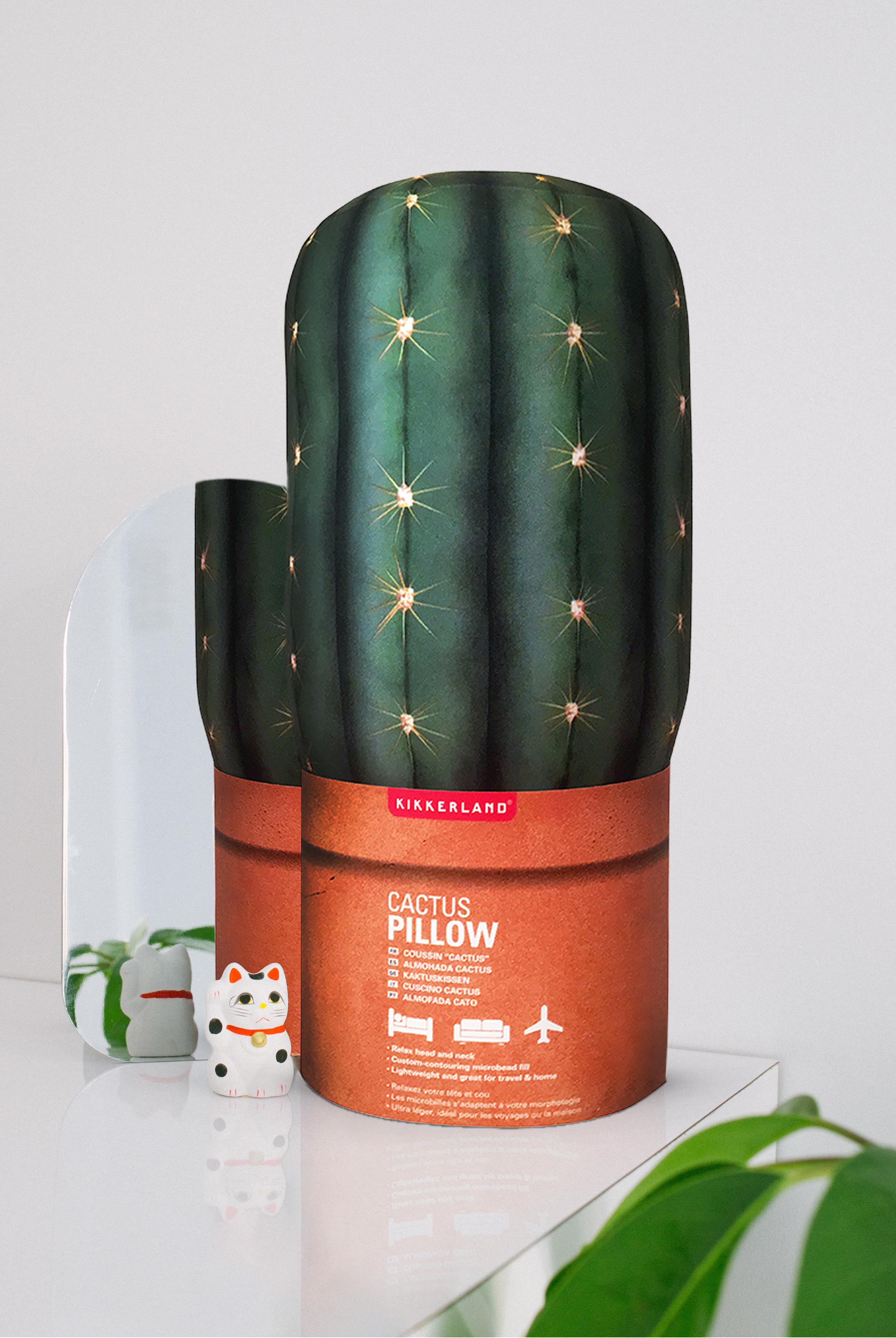 Cactus_Shelf.Cat_Portrait_FINAL