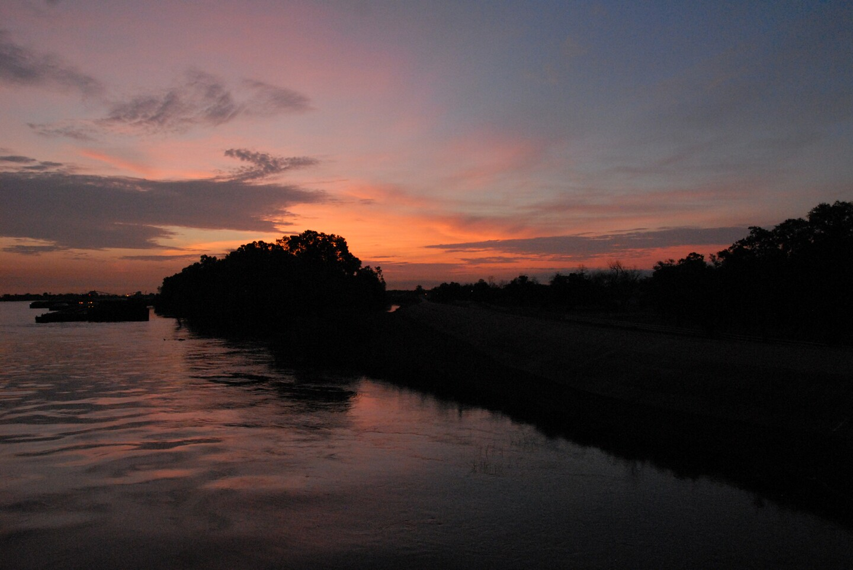Levee at Dawn