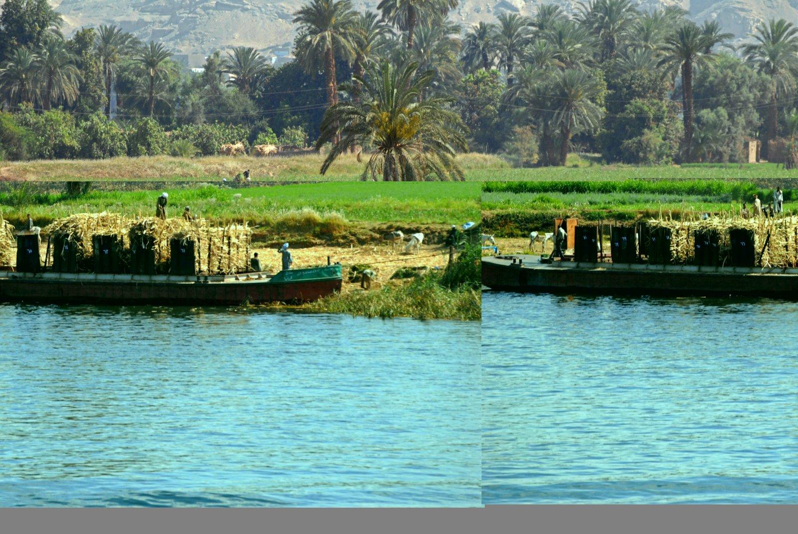 Egypt.08.08