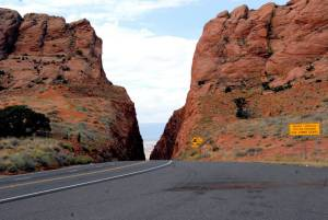 Marilyn Loved this twisting road !