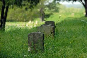One (pointed) Confederate Grave
