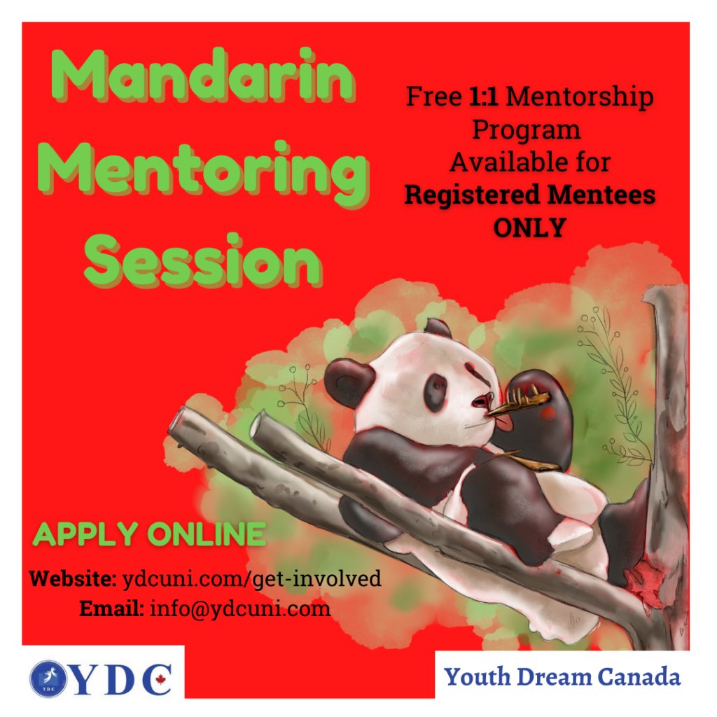 Mandarin Mentoring Session