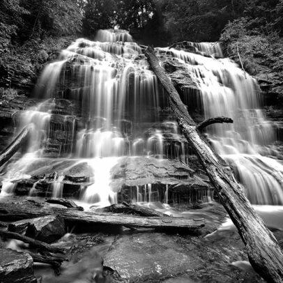 Paul Shatz Photography