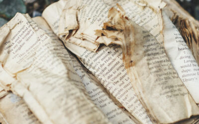 Guide to Book Condition: How Condition Affects a Book's Value