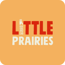 Little Prairies