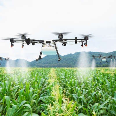 Drone being used to spray crops, flying over a field
