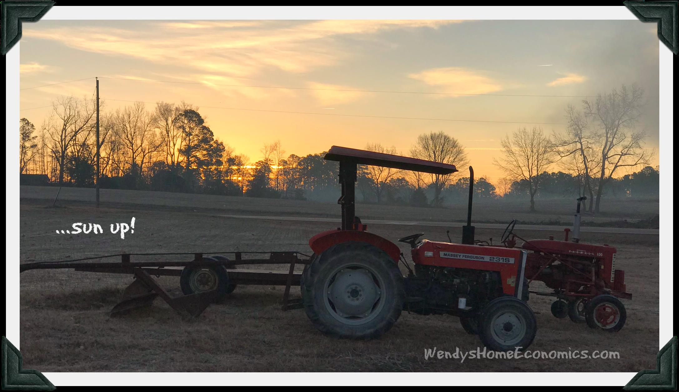 Sun up on Jackson Farm