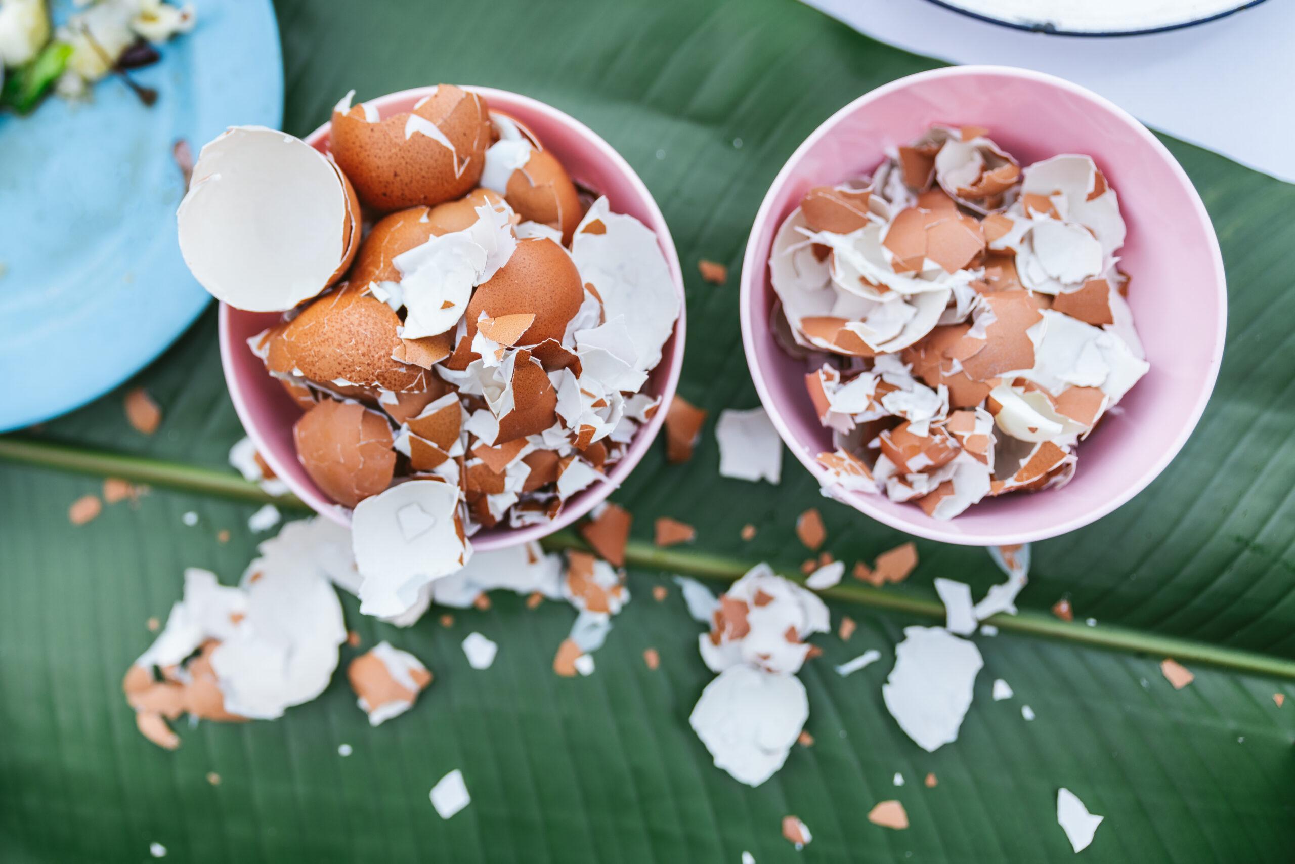 Peeling Eggs Wendy's Home Economics