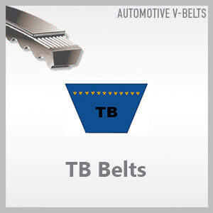 TB Belts