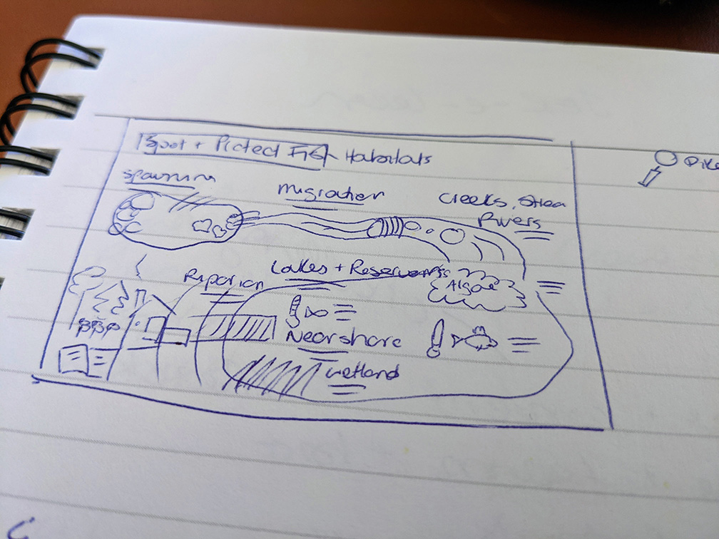 A very rough pen and paper sketch of an infographic in its early stages.