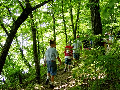 children hiking a forest trail