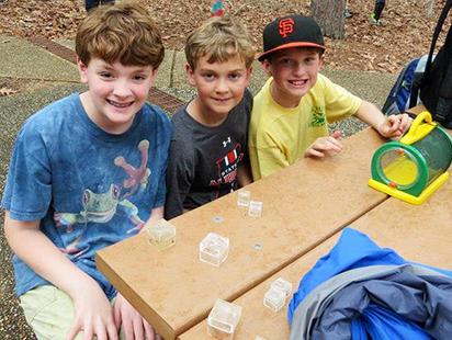 boys at a picnic table examining bugs