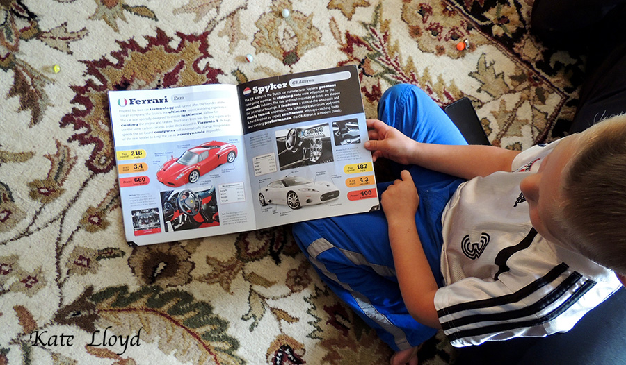 Our grandson awaits his opportunity to own his first Ferarri!
