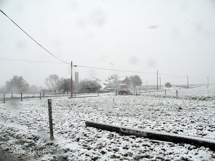 Snowy Lancaster
