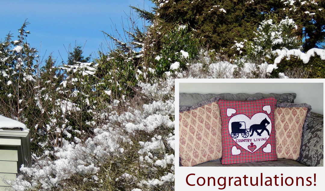 Valentine's Quillow Winner and Seattle Snowfall