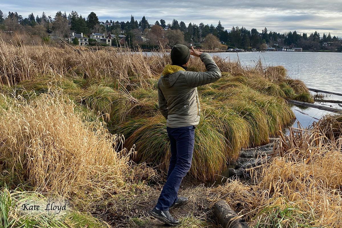 Our son's friend appreciating a view of Lake Washington.