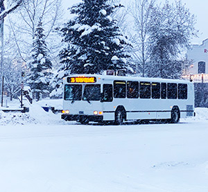 START Adds More Buses