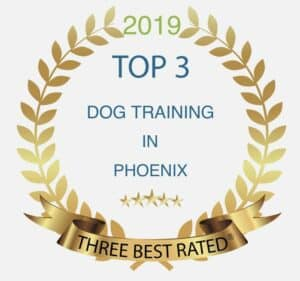 Top 3 Dog Trainers in phoenix