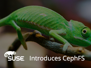 Industry First: SUSE Introduces CephFS